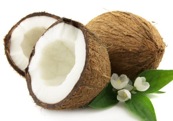 Noce di Cocco - Proprietà e Benefici