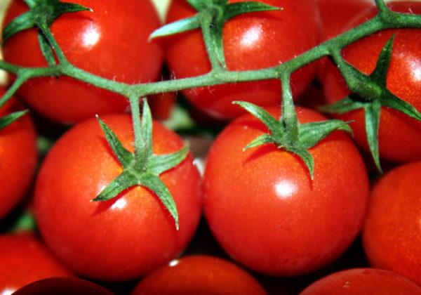 Pomodoro - Proprietà e Benefici
